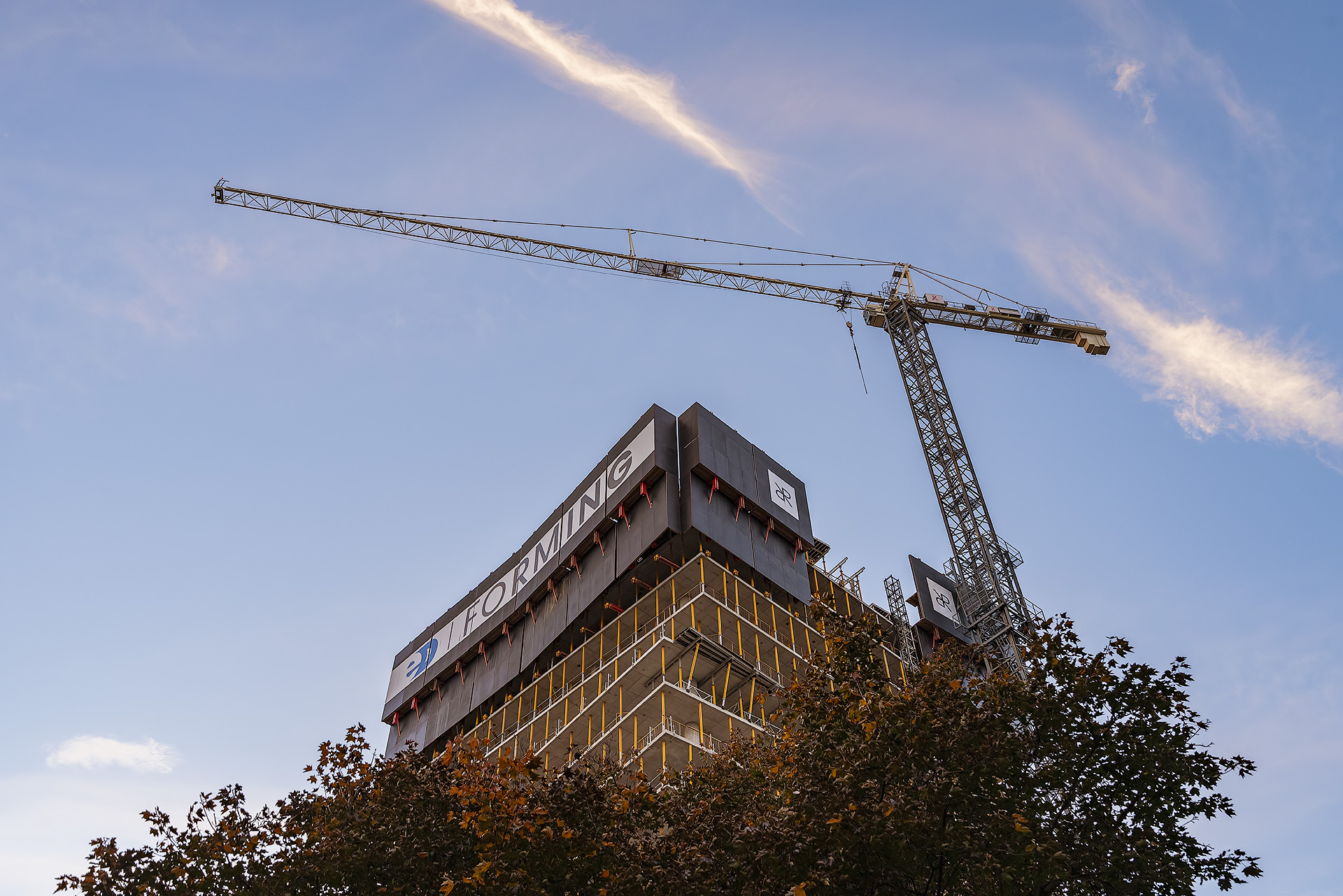 Looking up at the In-progress construction as if emerging from the treetops along with the crane at sunset